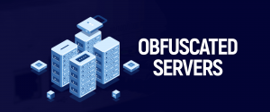 Obfuscated servers