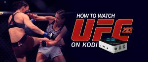 Watch UFC 253 on Kodi
