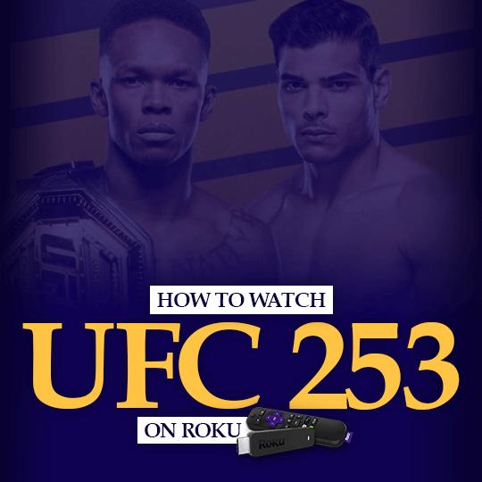 Watch UFC 253 on Roku