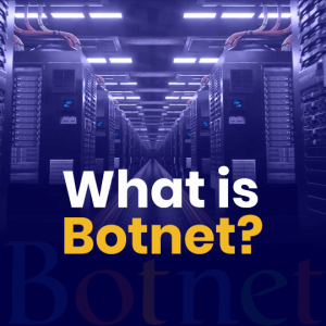 What is a Botnet