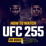 Watch UFC 255 on Roku